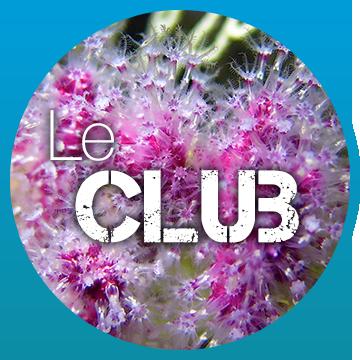 le club bulles plongée à Palavas